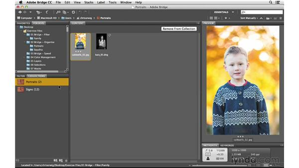 Grouping images into collections and smart collections: Photoshop CC for Photographers: Intermediate