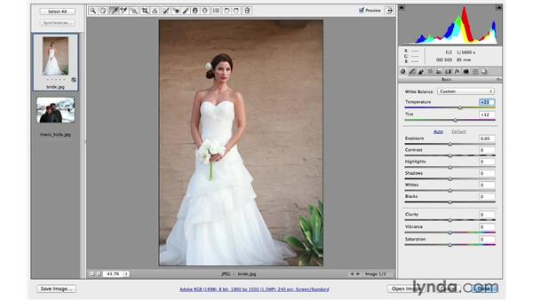 Correcting color casts using Camera Raw: Photoshop CC for Photographers: Intermediate