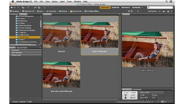 The advantages and disadvantages of using Smart Filters: Photoshop CC for Photographers: Intermediate