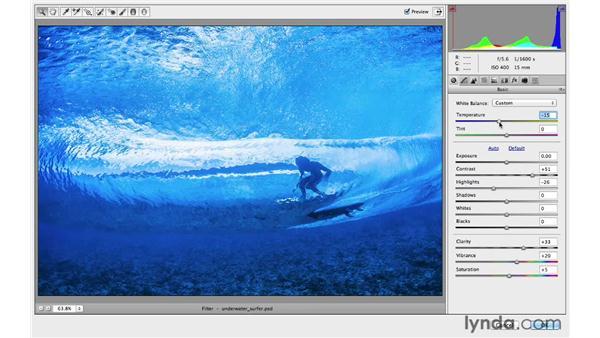 Enhancing your photographs using Camera Raw: Photoshop CC for Photographers: Intermediate