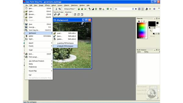 creating custom workspaces: Learning Jasc Paint Shop Power Suite Photo Edition