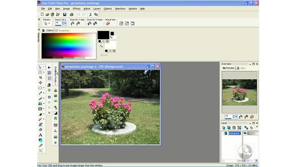 resetting the interface: Learning Jasc Paint Shop Power Suite Photo Edition