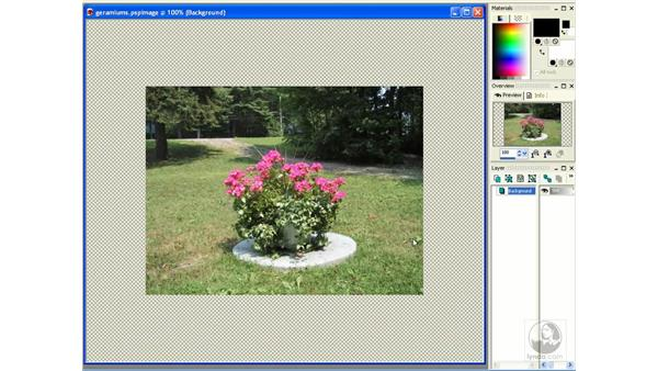 images in full screen mode: Learning Jasc Paint Shop Power Suite Photo Edition