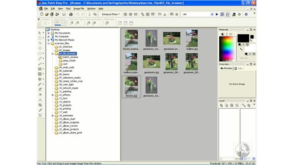 organizing images: Learning Jasc Paint Shop Power Suite Photo Edition