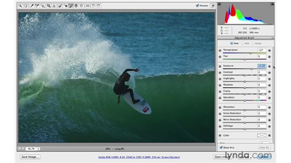 Introducing the Adjustment Brush: Photoshop CC for Photographers: Camera Raw 8 Intermediate