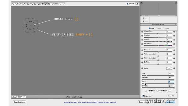 Customizing the Adjustment Brush characteristics: Photoshop CC for Photographers: Camera Raw 8 Intermediate