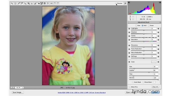 Correcting exposures with multiple adjustments: Photoshop CC for Photographers: Camera Raw 8 Intermediate