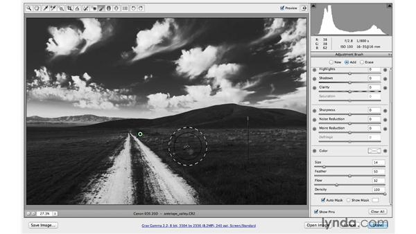 Making selective adjustments with Auto Mask: Photoshop CC for Photographers: Camera Raw 8 Intermediate