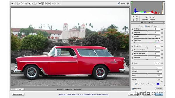 Using Auto Mask to remove color: Photoshop CC for Photographers: Camera Raw 8 Intermediate