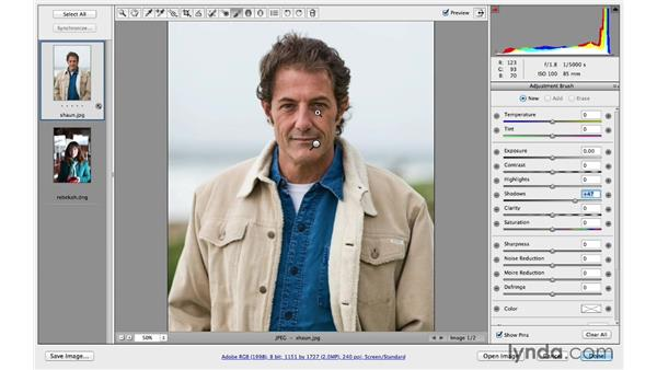 Making subtle exposure improvements with multiple adjustments: Photoshop CC for Photographers: Camera Raw 8 Intermediate