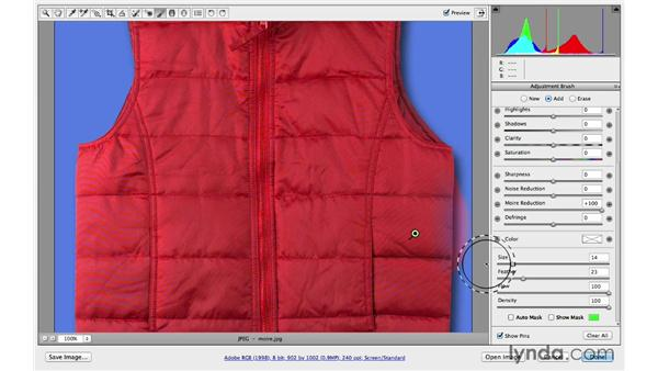 Removing moiré patterns: Photoshop CC for Photographers: Camera Raw 8 Intermediate