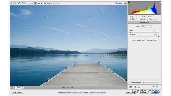 Retouching spots, lines, and other details: Photoshop CC for Photographers: Camera Raw 8 Intermediate