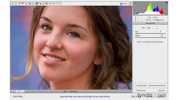Using a lower opacity to reduce distractions: Photoshop CC for Photographers: Camera Raw 8 Intermediate