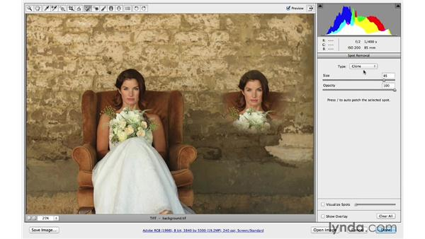 Removing distracting background elements: Photoshop CC for Photographers: Camera Raw 8 Intermediate