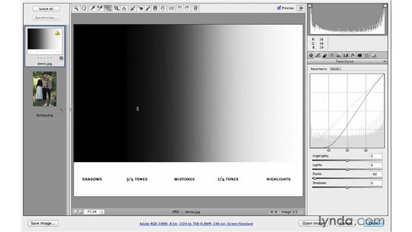 Learning about the Parametric and Point Tone curves: Photoshop CC for Photographers: Camera Raw 8 Intermediate