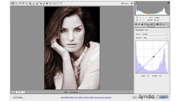 Creating a sepia-tone look and saving presets: Photoshop CC for Photographers: Camera Raw 8 Intermediate