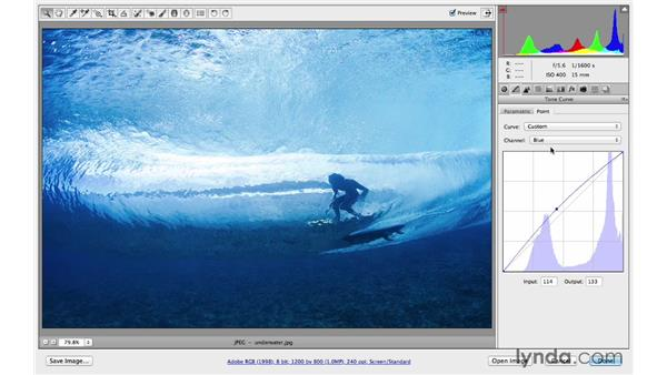 Making color come alive with the Point curve: Photoshop CC for Photographers: Camera Raw 8 Intermediate