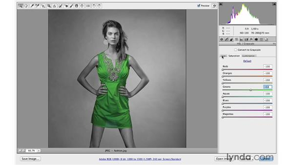 Enhancing color and tone: Photoshop CC for Photographers: Camera Raw 8 Intermediate