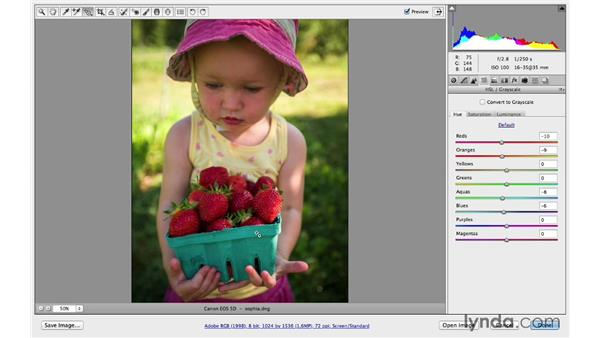 Making color changes: Photoshop CC for Photographers: Camera Raw 8 Intermediate