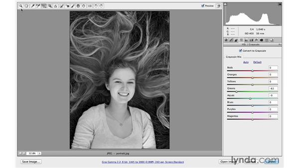 Removing colors with HSL: Photoshop CC for Photographers: Camera Raw 8 Intermediate