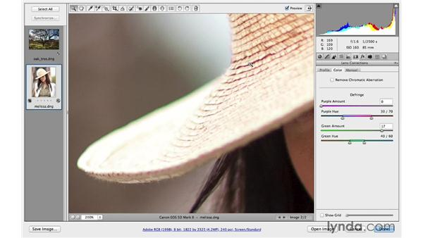 Correcting chromatic aberration and defringing: Photoshop CC for Photographers: Camera Raw 8 Intermediate