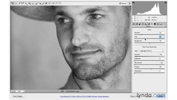 Using the Effect controls on a black-and-white photo: Photoshop CC for Photographers: Camera Raw 8 Intermediate