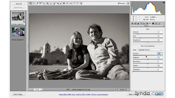 Creating and applying presets: Photoshop CC for Photographers: Camera Raw 8 Intermediate