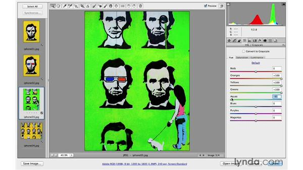 Quick raw processing of multiple files: Photoshop CC for Photographers: Camera Raw 8 Intermediate