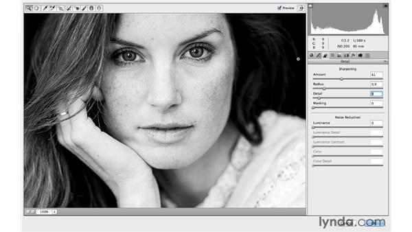 Recording a Camera Raw action in Photoshop: Photoshop CC for Photographers: Camera Raw 8 Intermediate