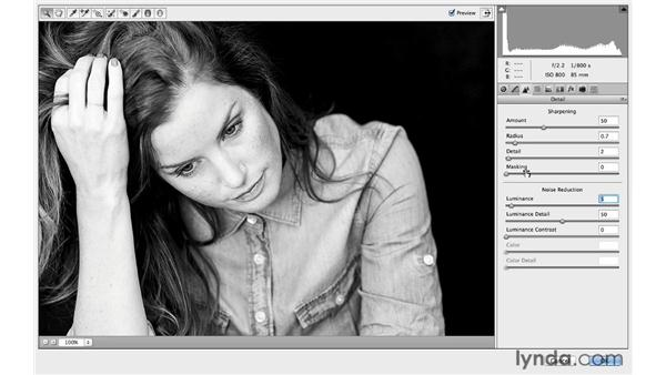 Creating and using a Camera Raw Smart Filter action: Photoshop CC for Photographers: Camera Raw 8 Intermediate