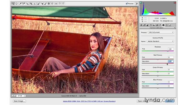 Using Curves and Camera Calibration to create a unique look: Photoshop CC for Photographers: Camera Raw 8 Intermediate