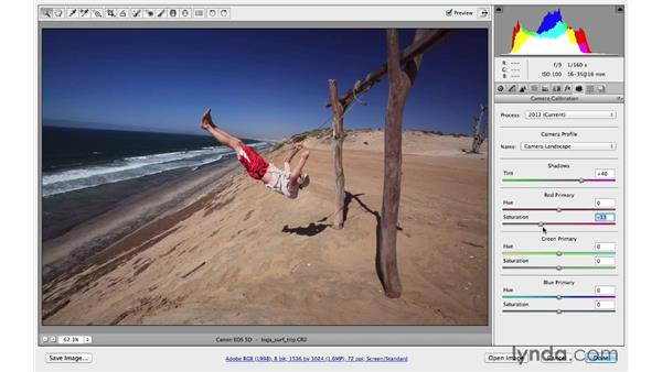 Changing color with Camera Calibration: Photoshop CC for Photographers: Camera Raw 8 Intermediate