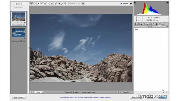 Creative color with the Camera Calibration controls: Photoshop CC for Photographers: Camera Raw 8 Intermediate