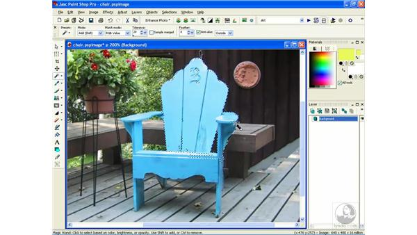 using the magic wand: Learning Jasc Paint Shop Power Suite Photo Edition
