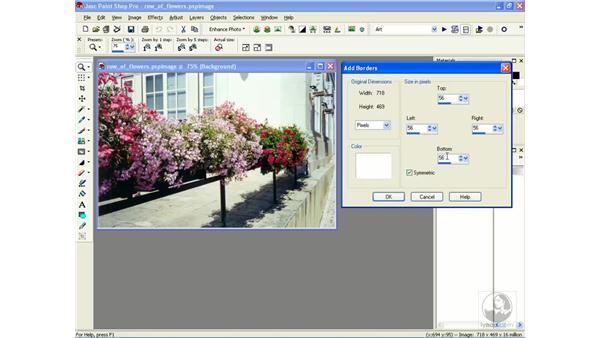 adding borders: Learning Jasc Paint Shop Power Suite Photo Edition