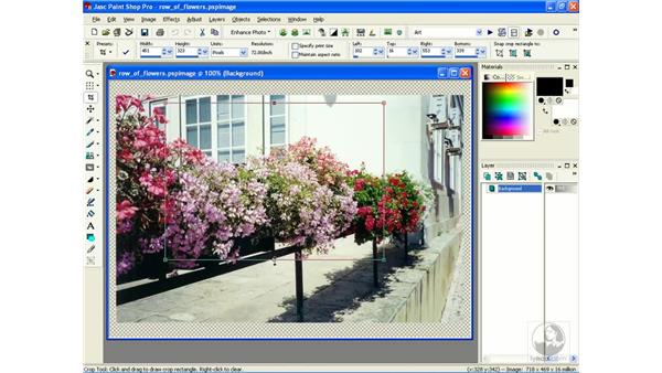 cropping: Learning Jasc Paint Shop Power Suite Photo Edition