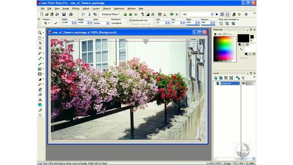 cropping for specific print sizes: Learning Jasc Paint Shop Power Suite Photo Edition