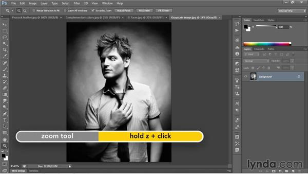 Zooming continuously: Photoshop CC 2013 One-on-One: Fundamentals