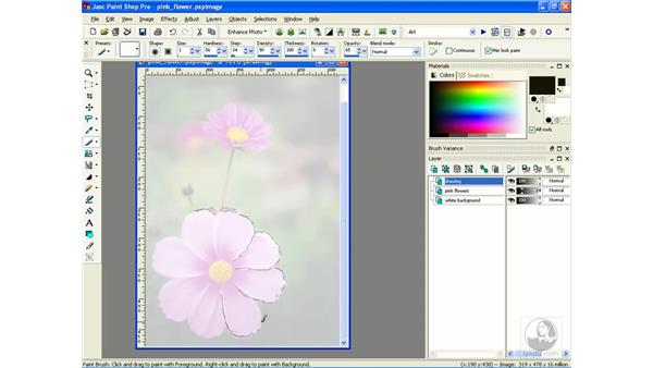 tracing photographs: Learning Jasc Paint Shop Power Suite Photo Edition