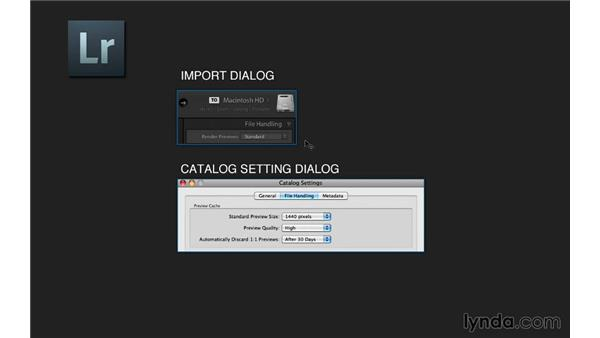 Setting catalog preferences, importing, and using previews: Lightroom 5 Essentials: 01 Importing with the Library Module