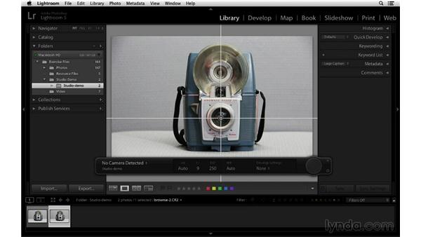 Using guides and grids for alignment: Lightroom 5 Essentials: 01 Importing with the Library Module