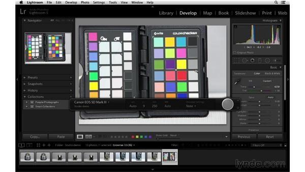 Creating color-correct photographs: Lightroom 5 Essentials: 01 Importing with the Library Module