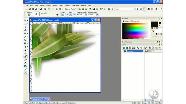 picture tubes: Learning Jasc Paint Shop Power Suite Photo Edition