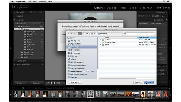 Optimizing and backing up catalogs: Lightroom 5 Essentials: 01 Importing with the Library Module
