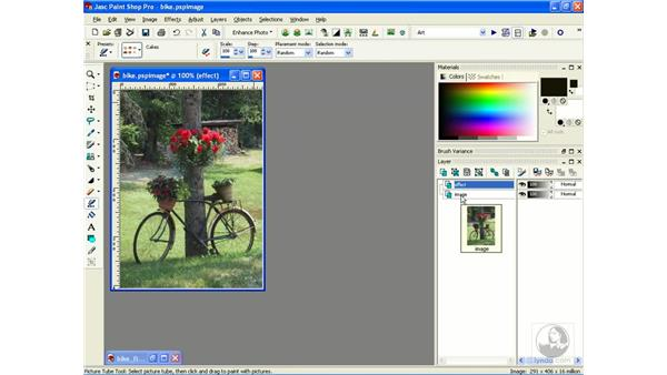 creating drawings: Learning Jasc Paint Shop Power Suite Photo Edition
