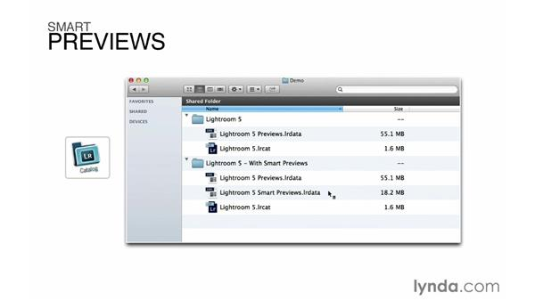What are Smart Previews and why do they matter?: Lightroom 5 Essentials: 01 Importing with the Library Module