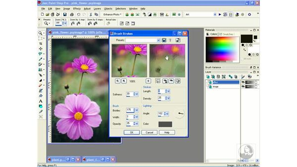 creating paintings: Learning Jasc Paint Shop Power Suite Photo Edition