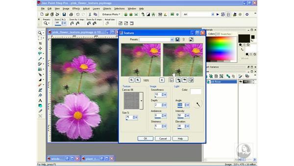 adding texture: Learning Jasc Paint Shop Power Suite Photo Edition