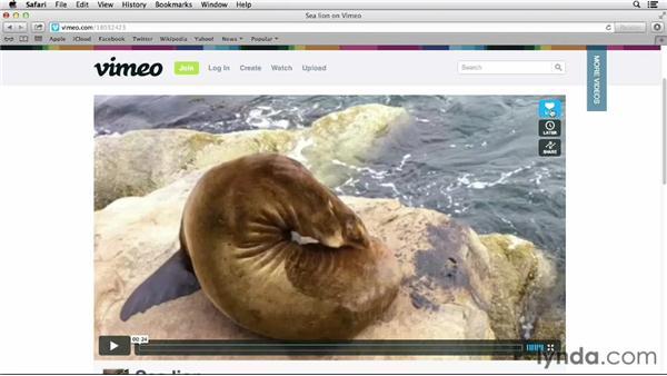 Watching videos: Vimeo Essential Training