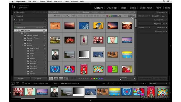 Filtering by still photos, virtual copies, and video files: Lightroom 5 Essentials: 02 Managing Images with the Library Module